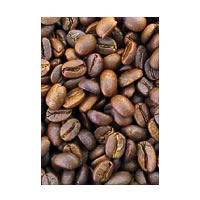 Woodi Peck's Arabica AA Roasted Coffee Beans, 250 gm