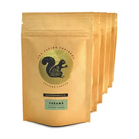 Flying Squirrel Taster's 6-Pack Coffee, Whole Beans 300 gm