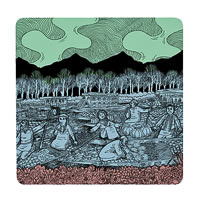 Posterboy Charbak Dal Lake Bazar Coasters - set of 4