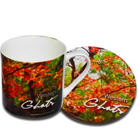 Hot Muggs Wild Focus Forests - Maharashtra, Mug & Coaster - set of 4