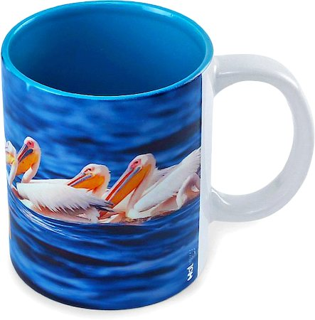 Hot Muggs Wild Focus - Where Friends There Beauty Mug